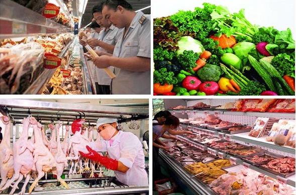 Ngành chế biến thực phẩm là gì?