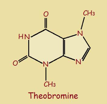 Theobromine là gì?