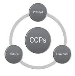CCP trong Haccp là gì?