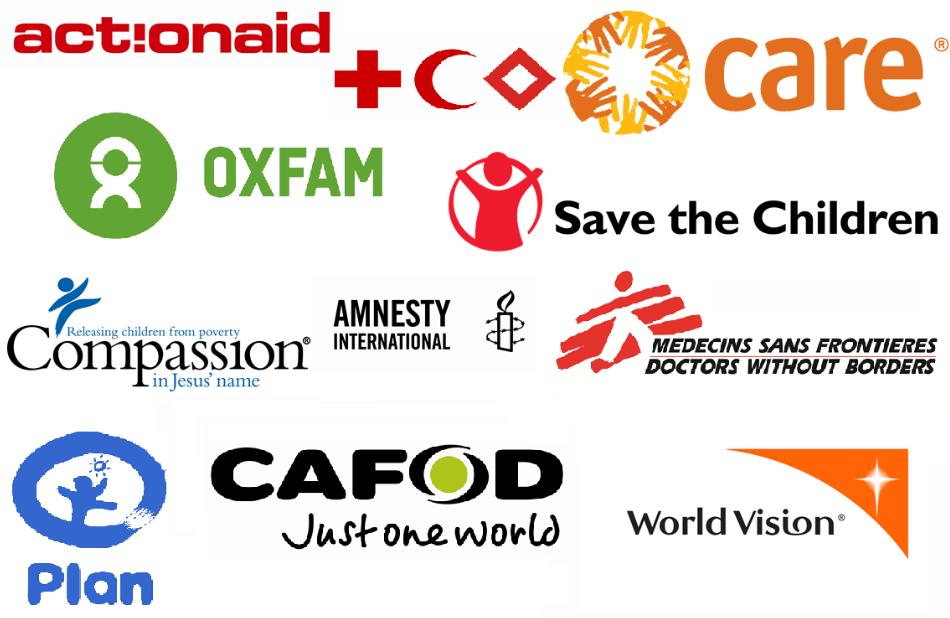 Các tổ chức phi chính phủ tại Việt Nam