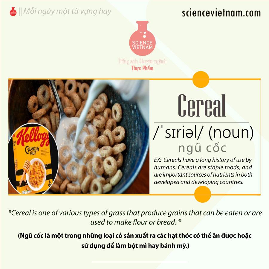 Cereal (Ngũ Cốc) là gì?