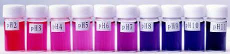 The Effect of pH and Color Stability of Anthocyanin on Food Colorant